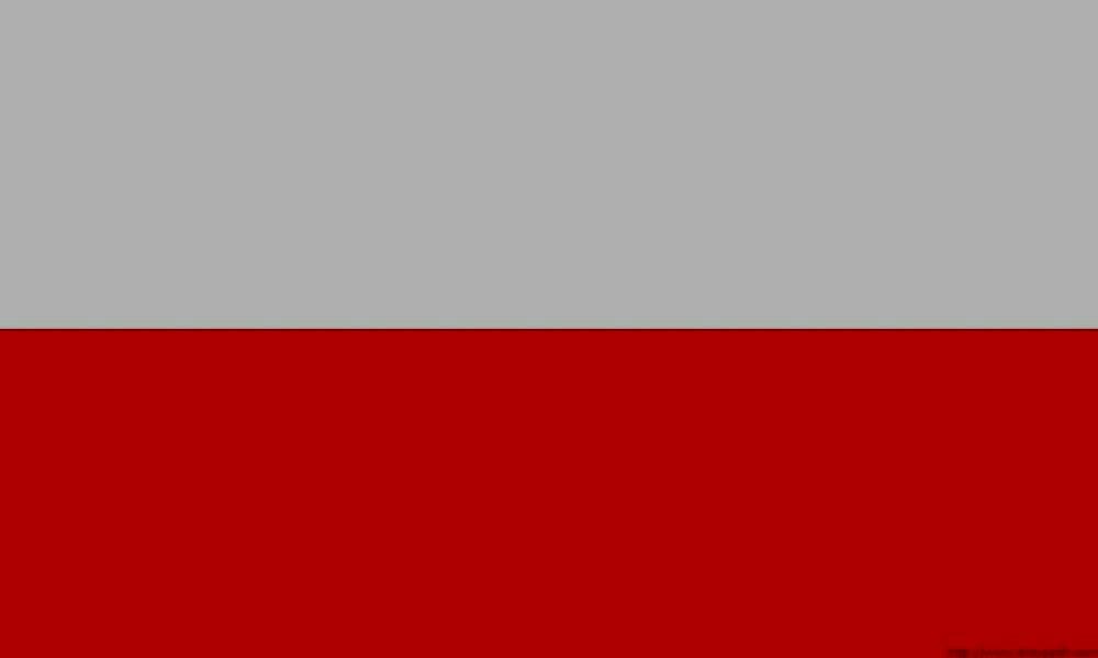 Перевод с польского языка