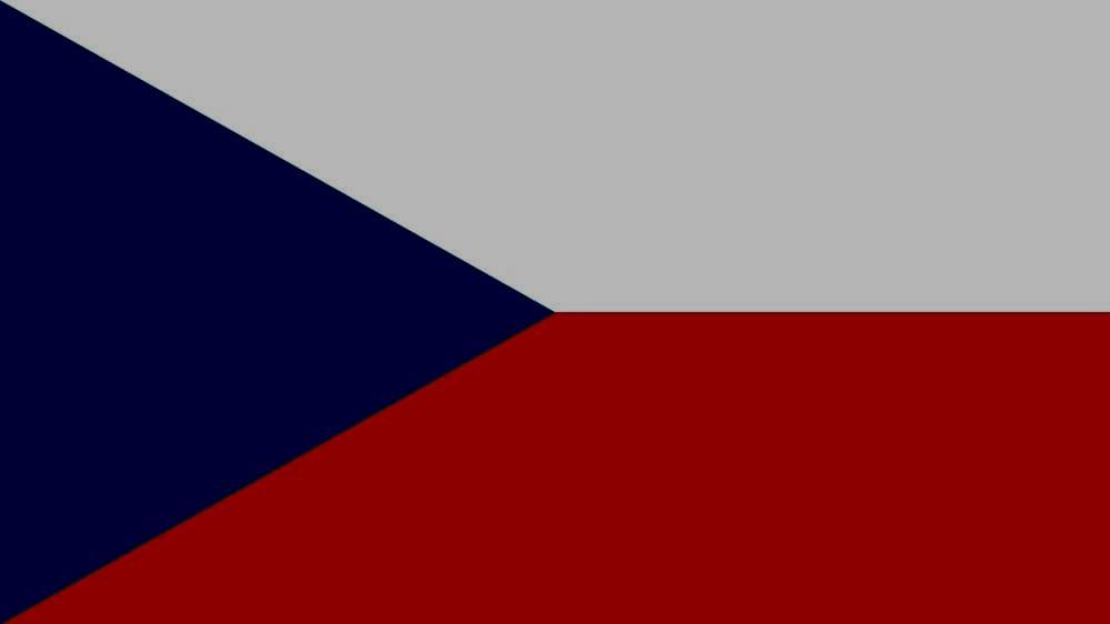 Переводы с чешского языка
